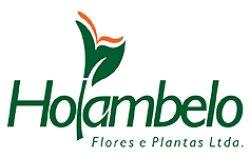 Holambelo