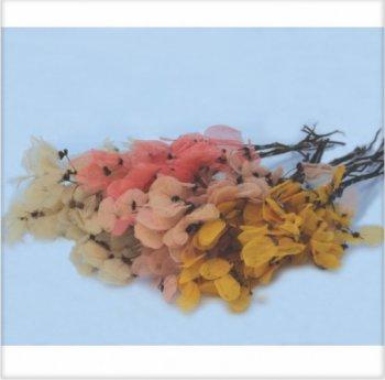 Folha no Galho Esquelitizada Decorar Mç c/ aprox 50 folhas